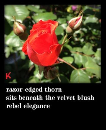 rebel elegance