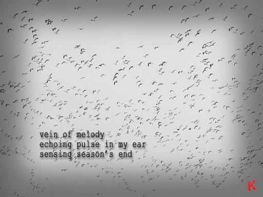 sensing seasons end